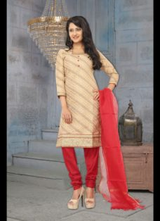 CLASSIC BEIGE AND RED EMBROIDERED SUIT